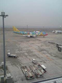 なぜか羽田空港にいます